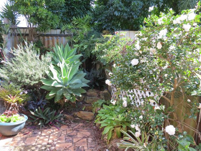 May 2015 garden 024_4000x3000