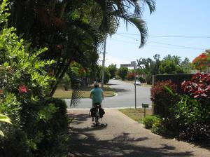 mixed garden bikes buses pc 041_3264x2448