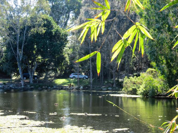 GC botanic garden-10_4000x3000