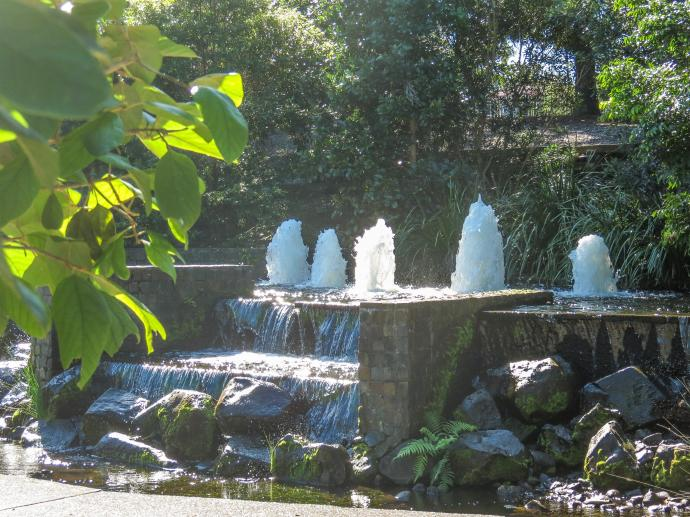 GC botanic garden-27_3931x2948