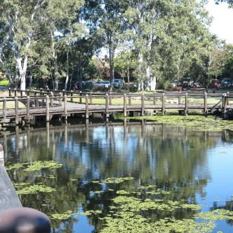 GC botanic garden-28_4000x3000