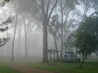 fog web 044_3264x2448