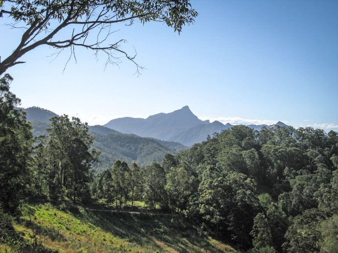 Mt Warning-4
