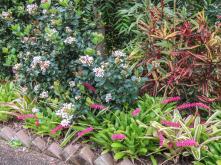 spring garden-10_4000x3000
