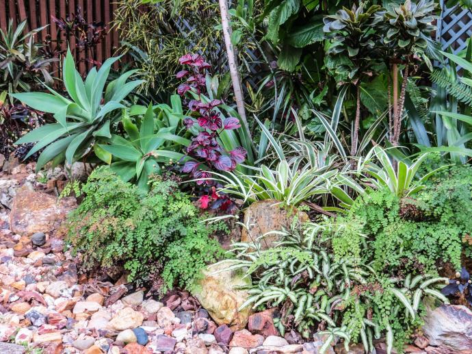 spring garden-15_4000x3000