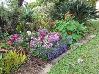 spring garden-2_4000x3000