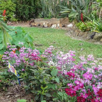 spring garden-6_3511x2364