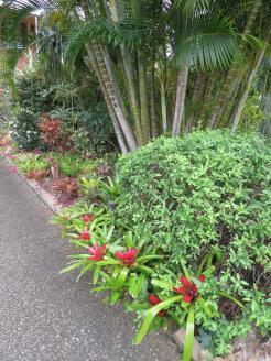 spring garden-8_3000x4000