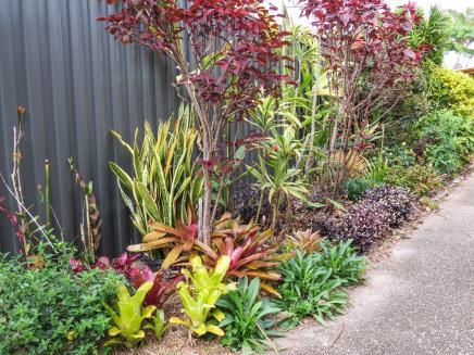 spring garden-9_4000x3000
