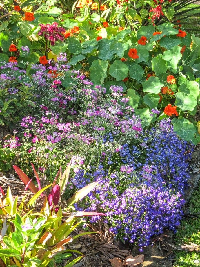 garden walk-10