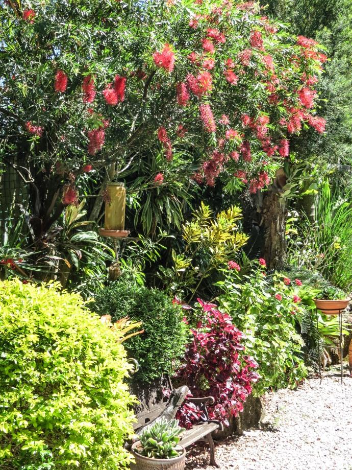 garden walk-17