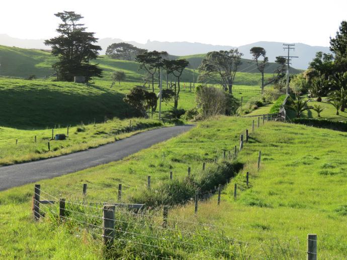 early orning farm walk grasses pc 018_4000x3000