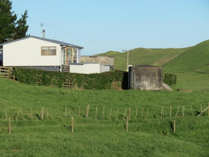 early orning farm walk grasses pc 025_4000x3000
