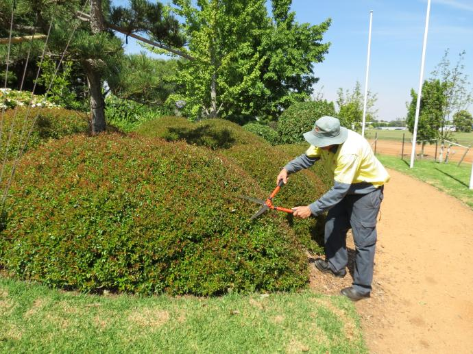 Dubbo botanic gardens pc 010_4000x3000