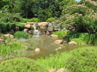 Dubbo botanic gardens pc 039_4000x3000