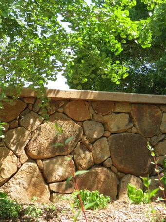 Dubbo botanic gardens pc 091_3000x4000