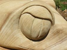 Dubbo botanic gardens pc 104_4000x3000