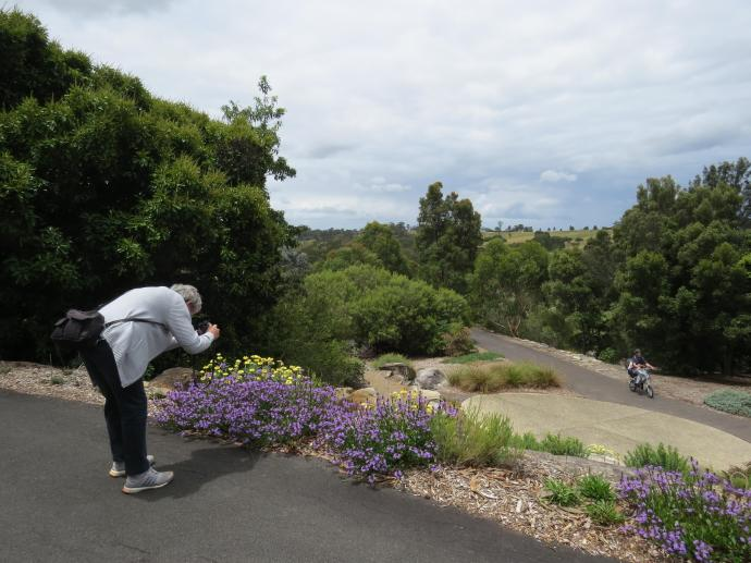 Mt Annan Gardens Camden jc 015_4000x3000