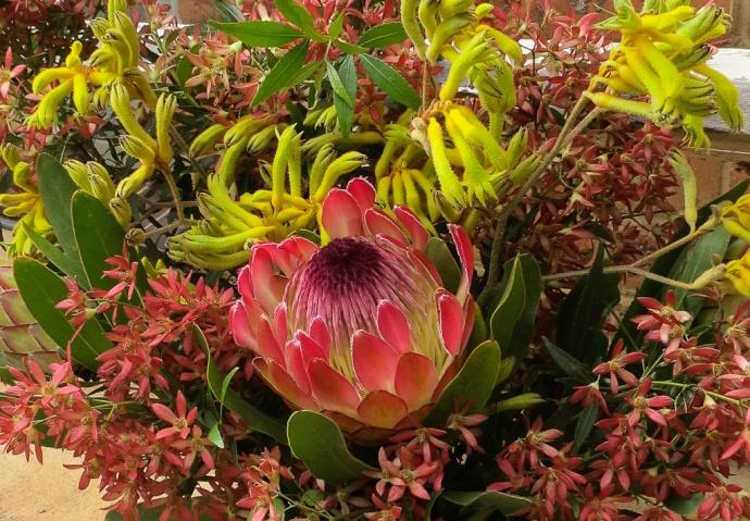 xmas flowers-2