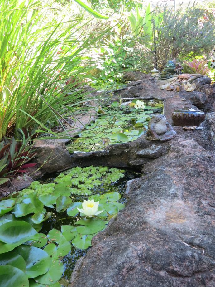 jan garden 005_3000x4000