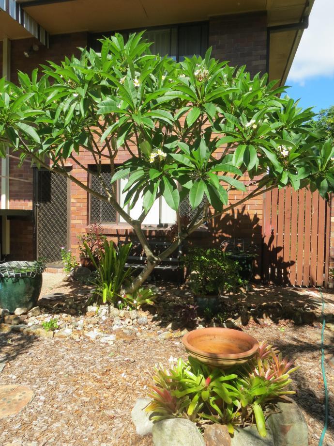 jan garden 011_3000x4000