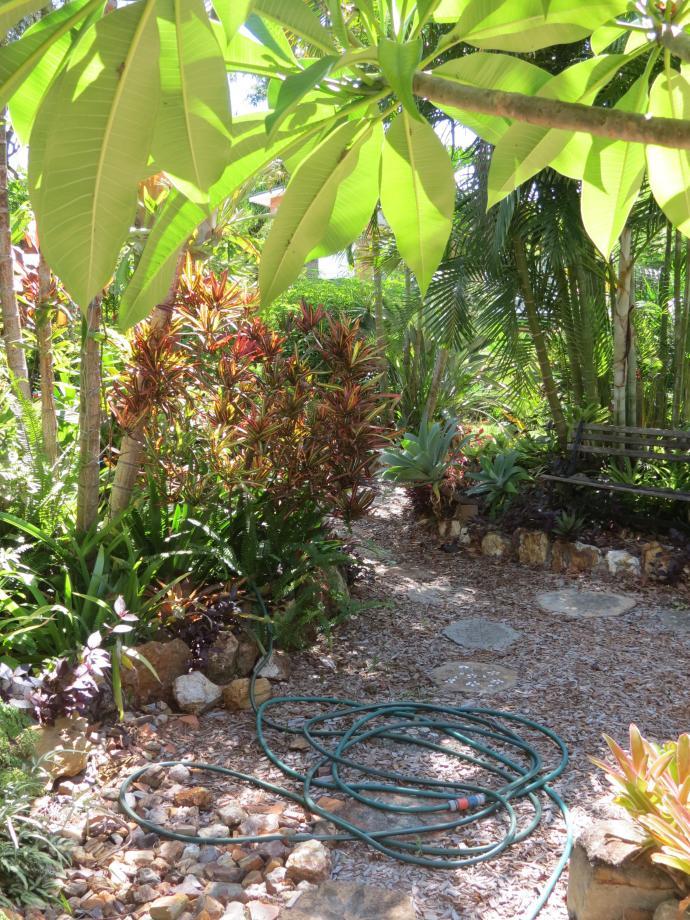 jan garden 021_3000x4000