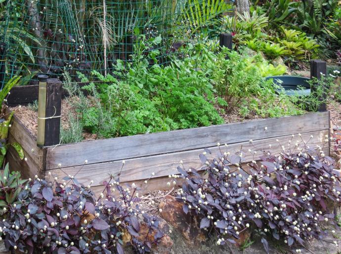 july garden-10_3413x2543