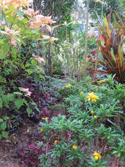 july garden-14_3000x4000