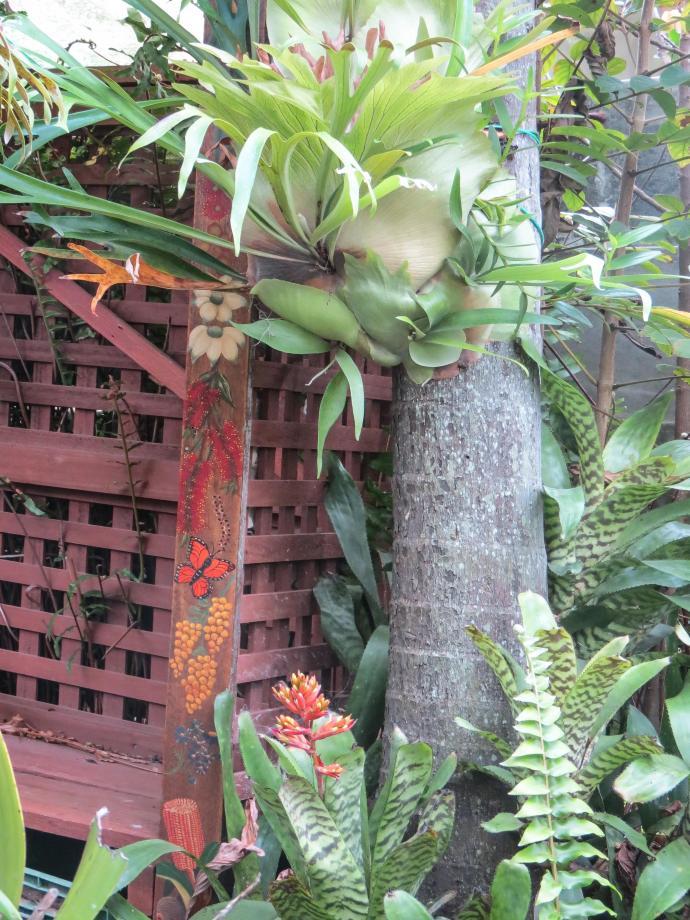 july garden-15_2817x3756